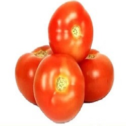 Tomato – Local, Organically Grown (1kg)