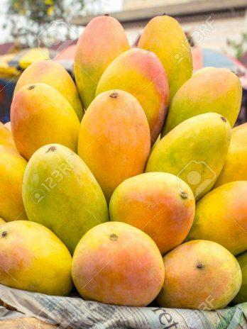5 Kg Sweet Bengali  Mangoes Basket from Murshidabad