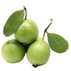 Guava(500g)-From Bisarga