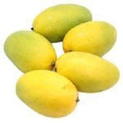Bisarga-Dasheri Mango(1kg)