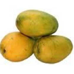 Bisarega-Mango Mallika(1kg)