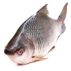 Rui Rohu Rohit Fish (1kg)