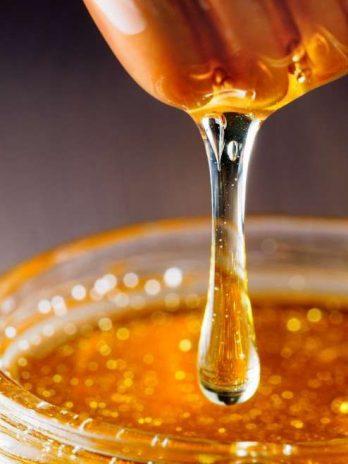 Sundarban Organic Honey