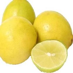 Lemon From Bisarga (4pcs)