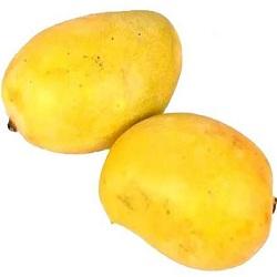 Bisarga-Kesar Mango(1kg)
