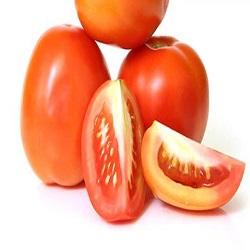 Fresh Tomato (1kg)