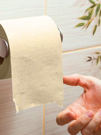 Beco Eco Friendly – Tissue – Bisarga Online Supermarket IndiaRoll/ Toilet Tissue Paper (3 Ply) 330 Pulls –