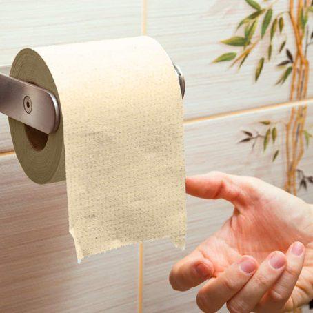 Beco Eco Friendly - Tissue - Bisarga Online Supermarket IndiaRoll/ Toilet Tissue Paper (3 Ply) 330 Pulls -