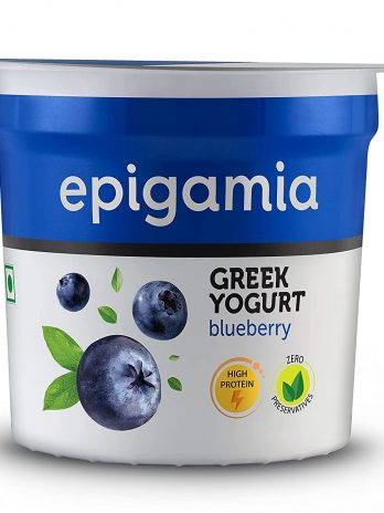 Epigamia Blueberry Greek Yogurt, 90g – Bisarga Online Supermarket India